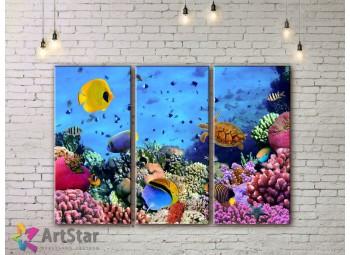 Модульные картины с животными, Art. AMM778014