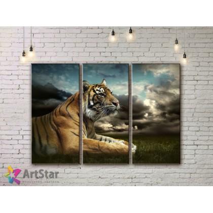 Модульные картины с животными, Art. AMM778018