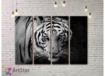 Модульные картины с животными, Art. AMM778032
