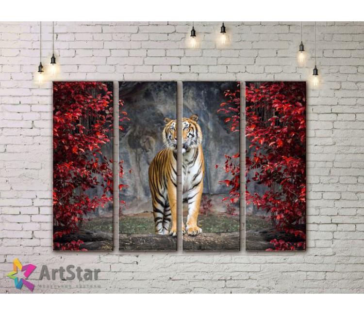 Модульные картины с животными, Art. AMM778040