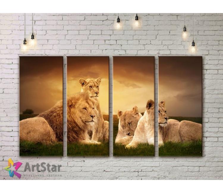 Модульные картины с животными, Art. AMM778042