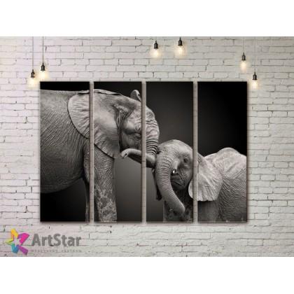 Модульные картины с животными, Art. AMM778050