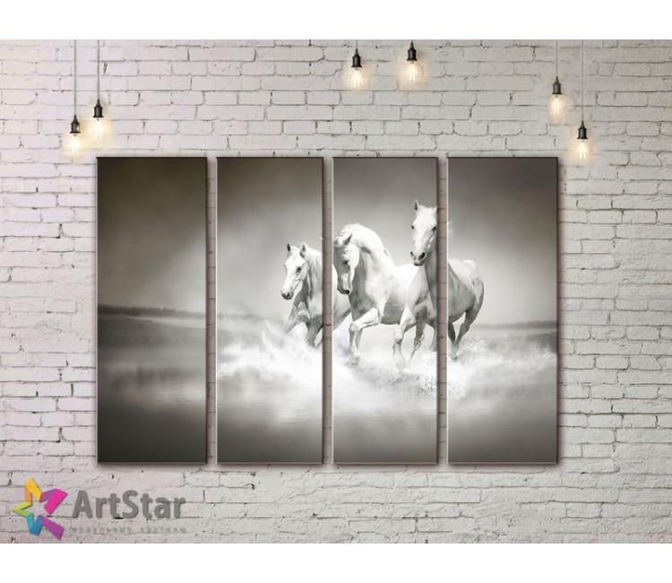Модульные картины с животными, Art. AMM778056