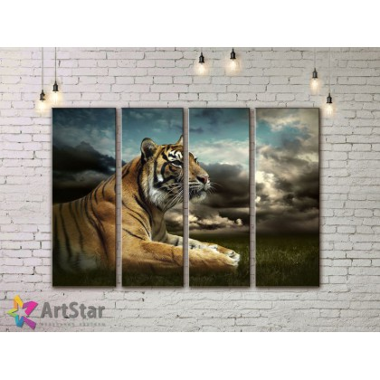 Модульные картины с животными, Art. AMM778058