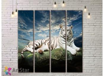 Модульные картины с животными, Art. AMM778064