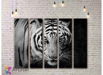 Модульные картины с животными, Art. ANIM778076
