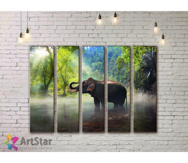 Модульные картины с животными, Art. ANIM778090