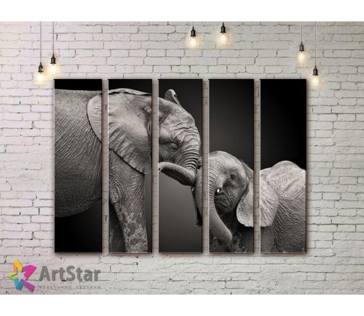 Модульные картины с животными, Art. ANIM778096