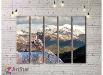 Модульные картины с животными, Art. ANIM778104