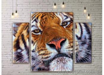 Модульные картины с животными, Art. ANIM777073