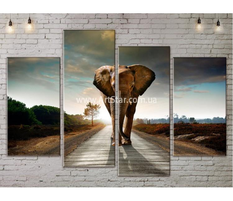 Модульные картины с животными, Art. ANIM778031