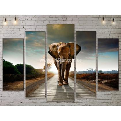 Модульные картины с животными, Art. ANIM778057