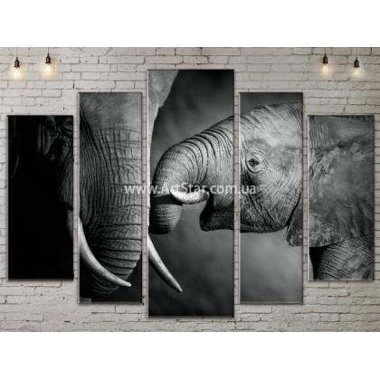 Модульные картины с животными, Art. ANIM778063