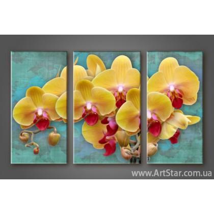 Модульная картина Орхидеи 2