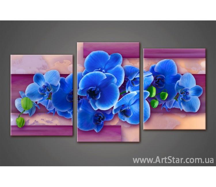 Модульная картина Орхидеи 3