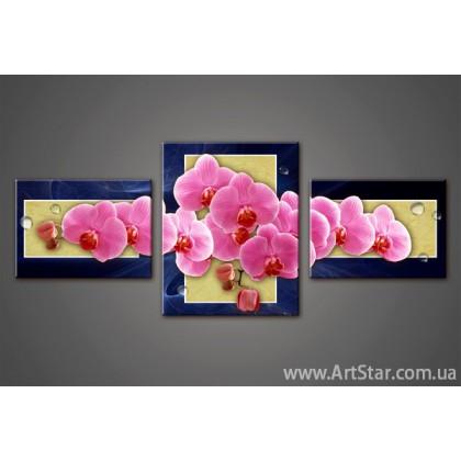 Модульная картина, Орхидея - SALE