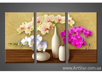 Модульная картина Орхидеи 5
