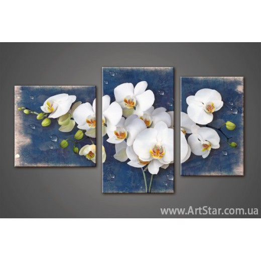 Модульная картина Орхидеи 6
