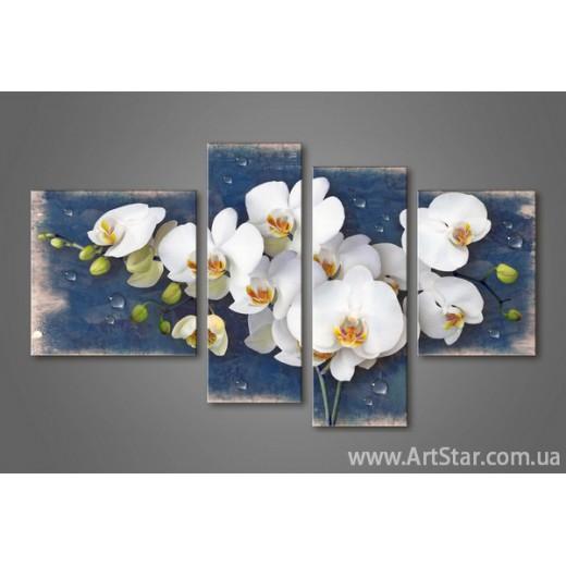 Модульная картина Орхидеи(4) 6