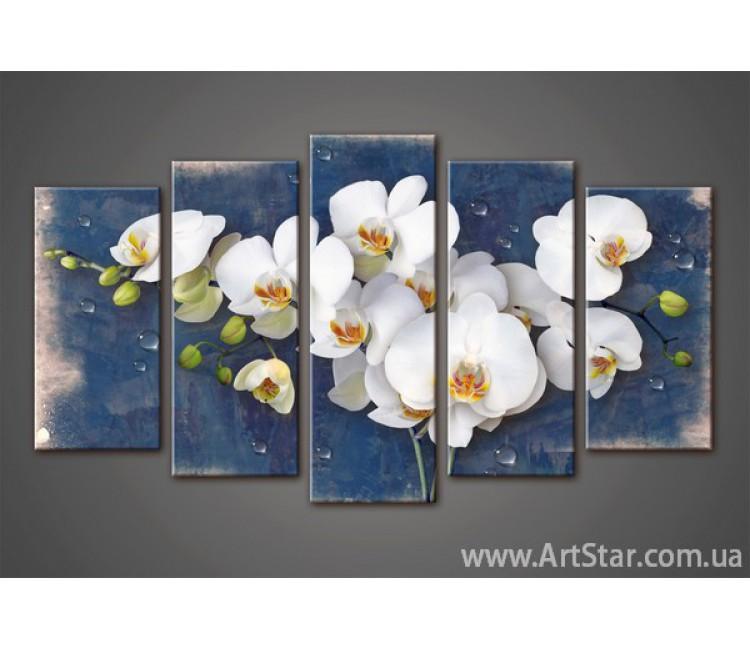 Модульная картина Орхидеи (5) 6
