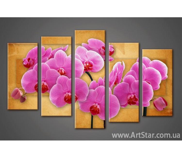 Модульная картина Орхидеи (5) 8
