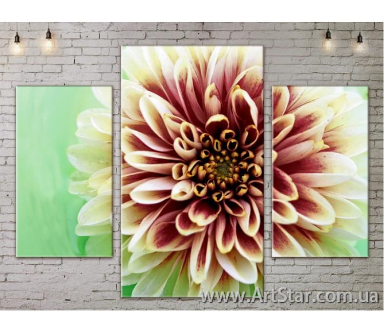 Модульные Картины Цветы, Art. FLOW777001