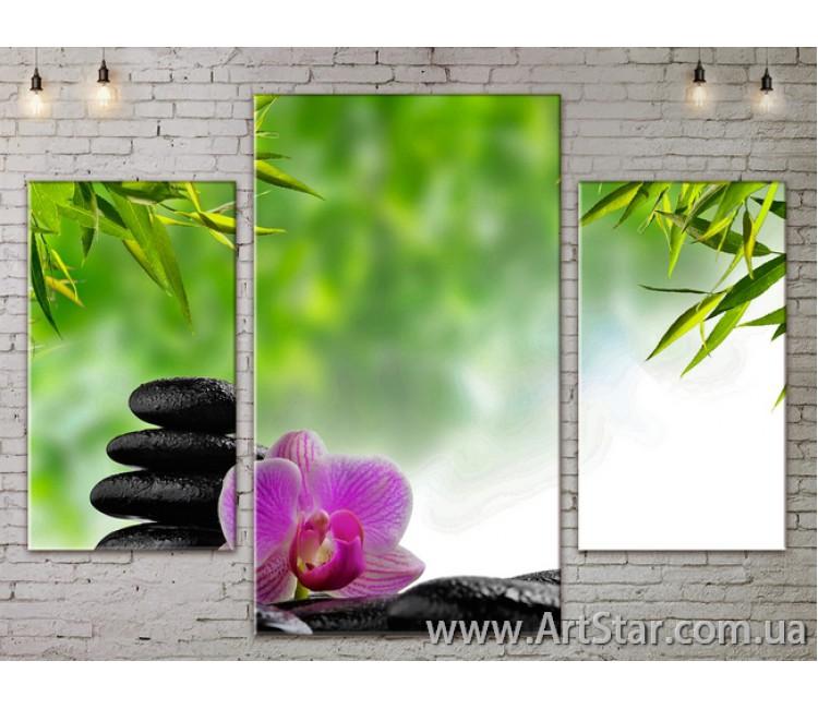 Модульные Картины Цветы, Art. FLOW777009