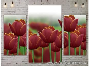 Модульные Картины Цветы, Art. FLOW777021