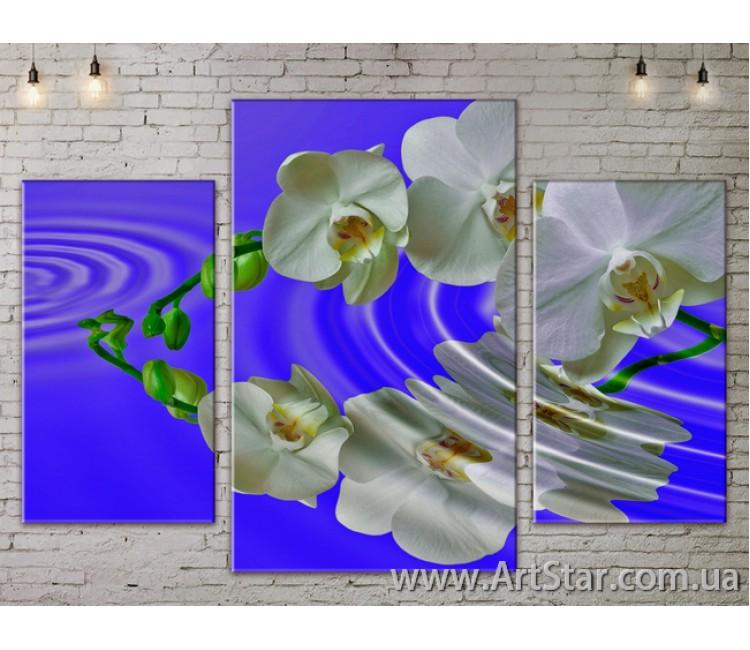 Модульные Картины Цветы, Art. FLOW777031