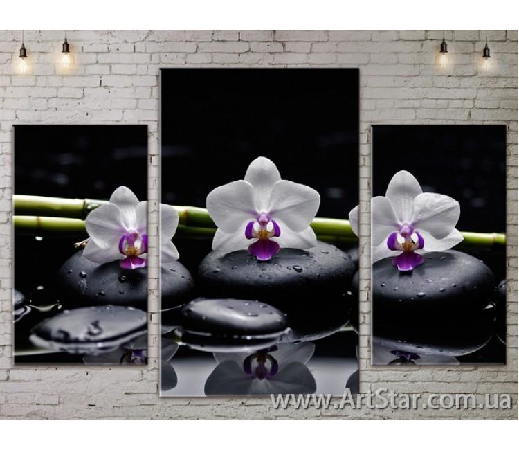 Модульные Картины Цветы, Art. FLOW777035