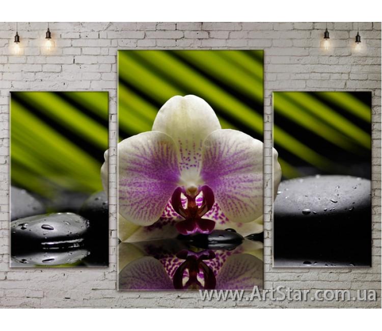 Модульные Картины Цветы, Art. FLOW777039