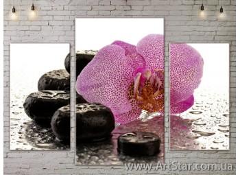 Модульные Картины Цветы, Art. FLOW777045