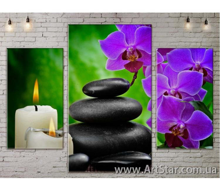 Модульные Картины Цветы, Art. FLOW777075