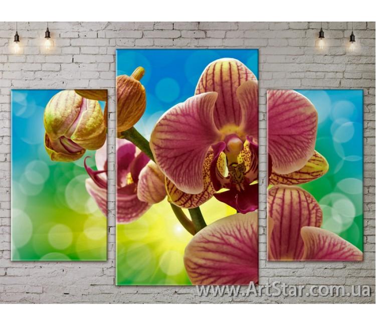 Модульные Картины Цветы, Art. FLOW777079