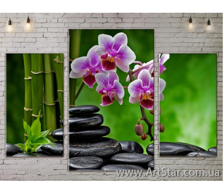Модульные Картины Цветы, Art. FLOW777095
