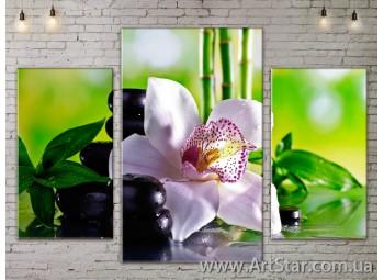 Модульные Картины Цветы, Art. FLOW777099