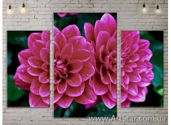 Модульные Картины Цветы, Art. FLOW777109