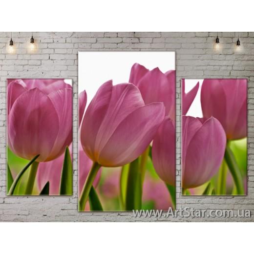 Модульные Картины Цветы, Art. FLOW777113