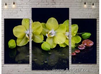 Модульные Картины Цветы, Art. FLOW777117