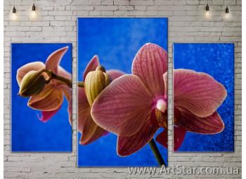 Модульные Картины Цветы, Art. FLOW777119
