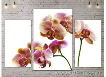 Модульные Картины Цветы, Art. FLOW777129