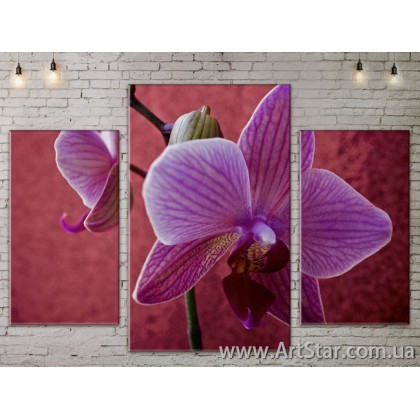 Модульные Картины Цветы, Art. FLOW777149