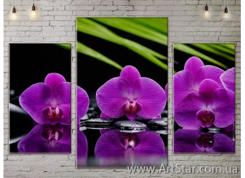 Модульные Картины Цветы, Art. FLOW777157