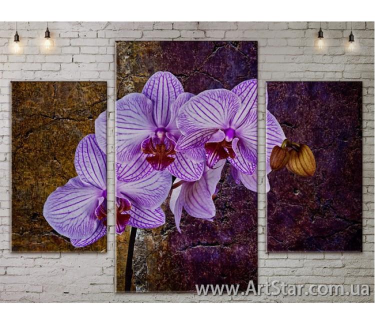 Модульные Картины Цветы, Art. FLOW777167