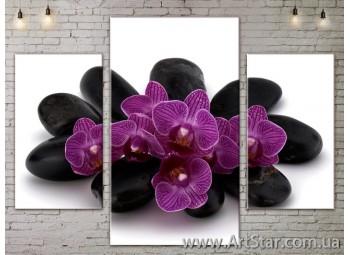 Модульные Картины Цветы, Art. FLOW777177