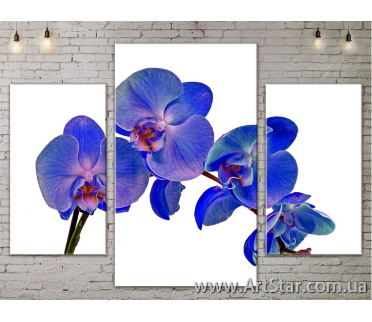 Модульные Картины Цветы, Art. FLOW777181
