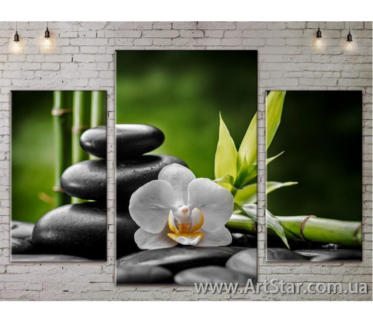 Модульные Картины Цветы, Art. FLOW777199