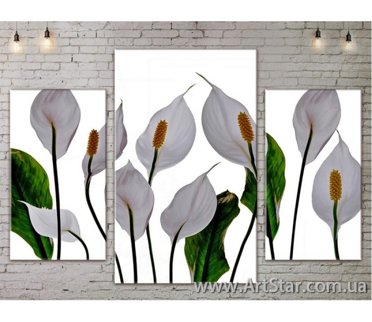 Модульные Картины Цветы, Art. FLOW777215