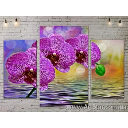 Модульные Картины Цветы, Art. FLOW777223