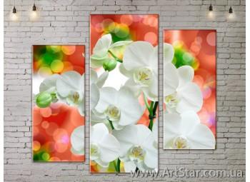 Модульные Картины, Цветы, Art. FLOW777243